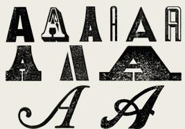Typefaces Explored