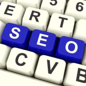 SEO Feed the Search Engines